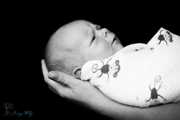 Brendan_Newborn_VA_Beach_Newborn_Photographer-49